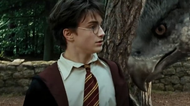 Harry Potter e Bicuço